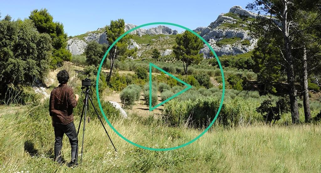 Paysages quotidiens, Observatoire photographique des paysages des Alpilles